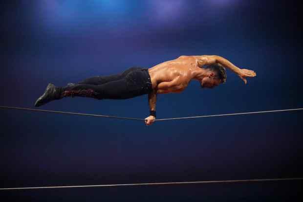 Origines, du Cirque Alexis Gruss