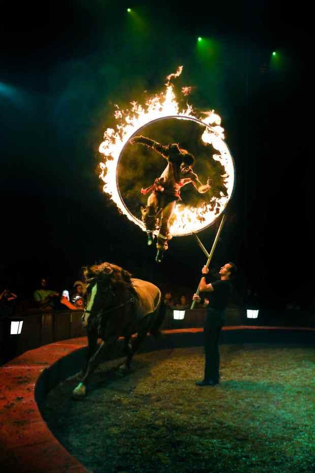 Cirque Alexis Gruss